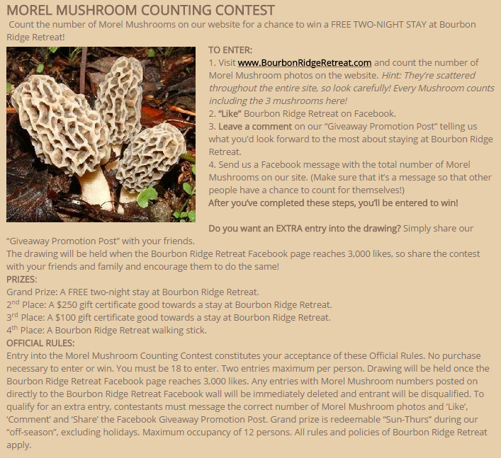 BRR Morel Mushroom